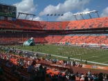 NFL games, go Dolphins!